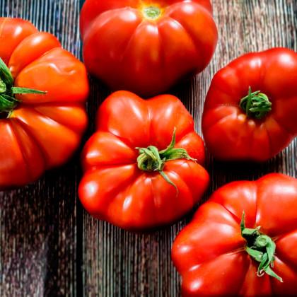 Paradajka kríčková Marmande - predaj semien - 12 ks