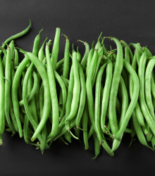 Fazuľa kolíková Primel - Phaseolus vulgaris - semená fazule - 20 ks