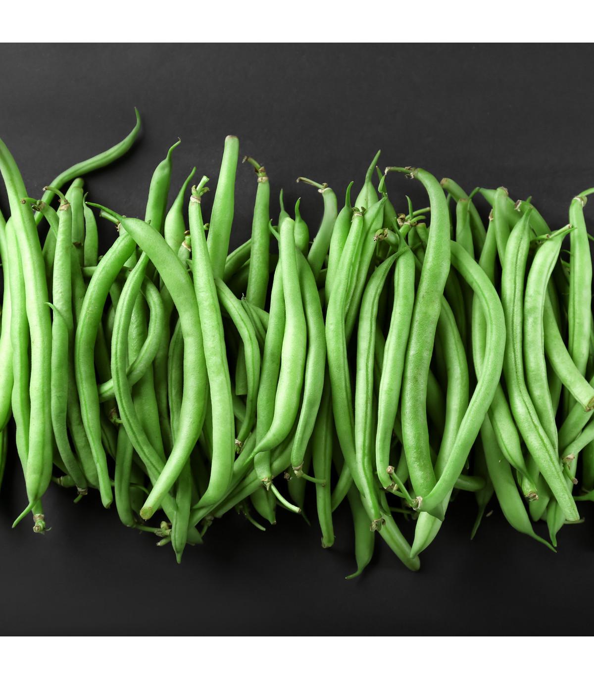 Fazuľa popínavá Primel - Phaseolus vulgaris - semená - 20 ks