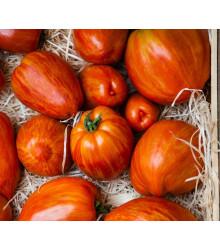 More about Paradajka Tigerella - Solanum lycopersicum - rajčiak - semená - 6 ks