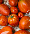 Paradajka Tigrella - semená paradajok - 6 ks