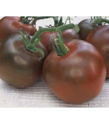 Paradajka čierna - semená paradajky - semiačka - 6 ks