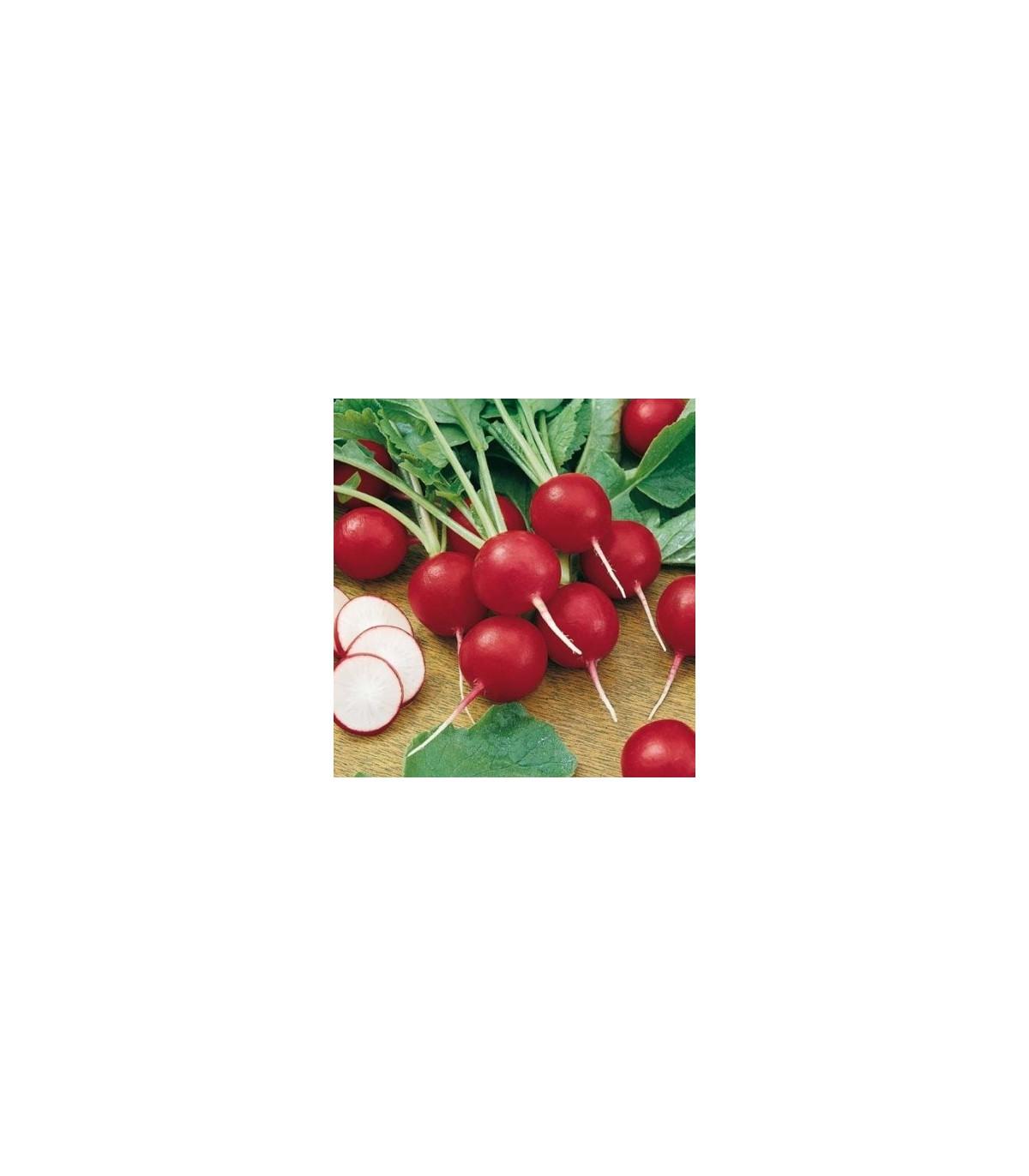 BIO Reďkovka Topsi - semená reďkovky - semiačka - 0,3 gr