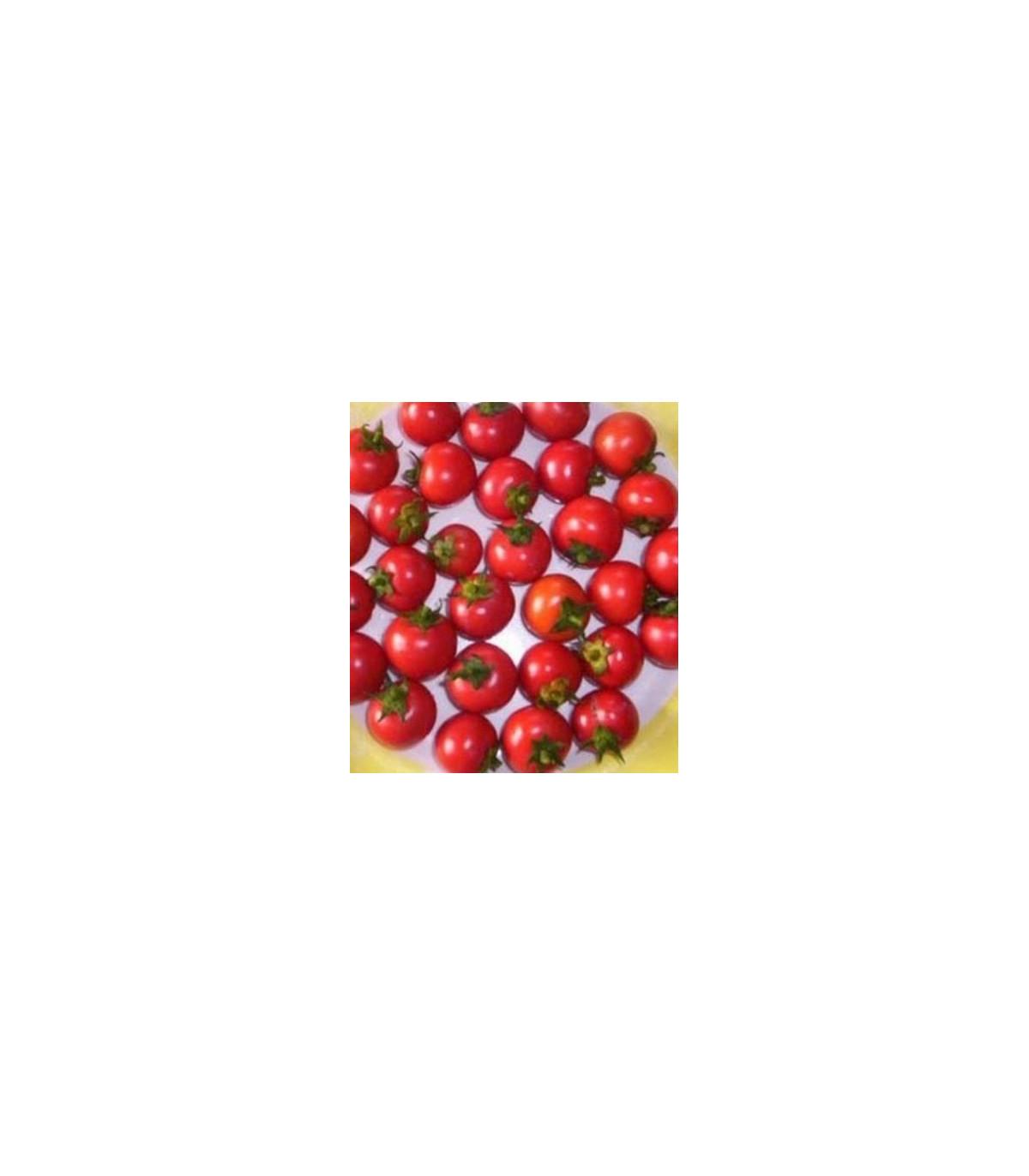 Rajčina koktajlová Bistro - semená rajčiny - semiačka - 15 ks