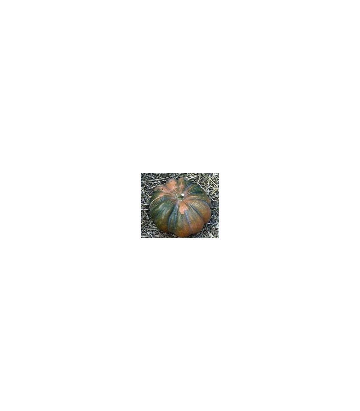 BIO Dyňa muškátová - semená dyne - semiačka - 5 ks
