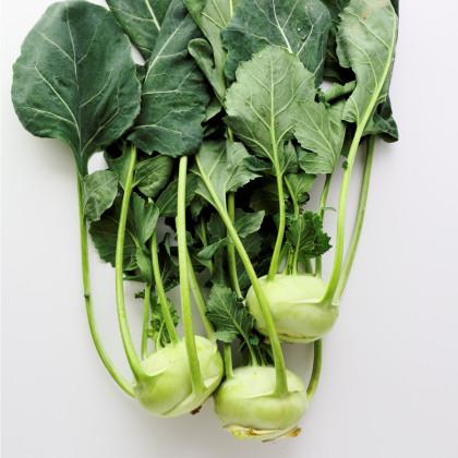 BIO kaleráb Noriko - Brassica oleracea convar. gongylodes - bio semená kalerábu - 80 ks