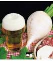 Reďkovka polodlhá biela k pivu - semená reďkovky - semiačka - 60 ks
