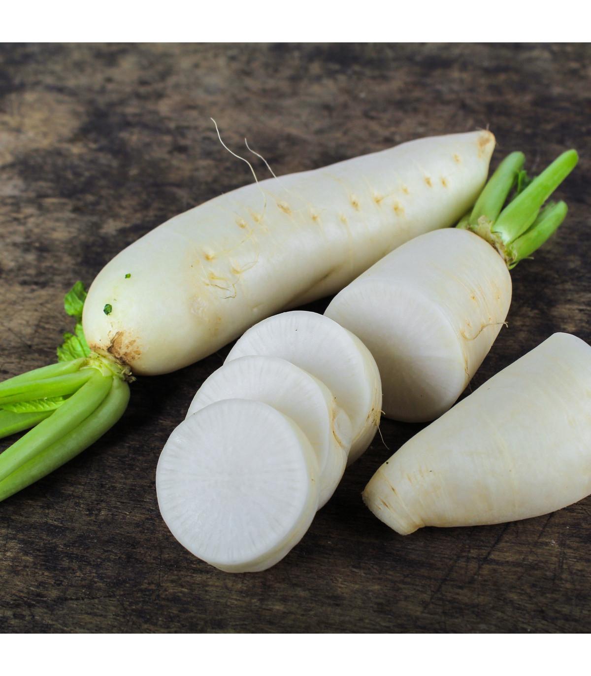 Reďkovka siata biela - Rahpanus sativus - semená bielej reďkovky - semiačka - 1 gr