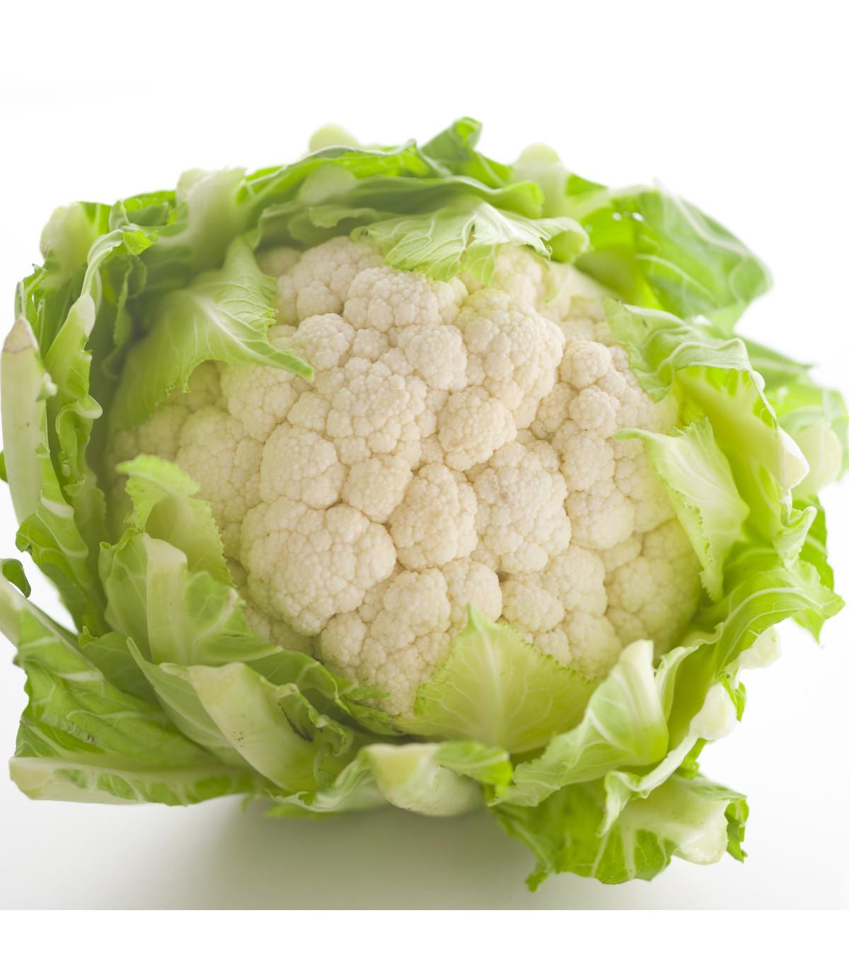 Karfiol skorý Erfurter Zwerg -  Brassica oleracea var. botrytis - semená - 120 ks