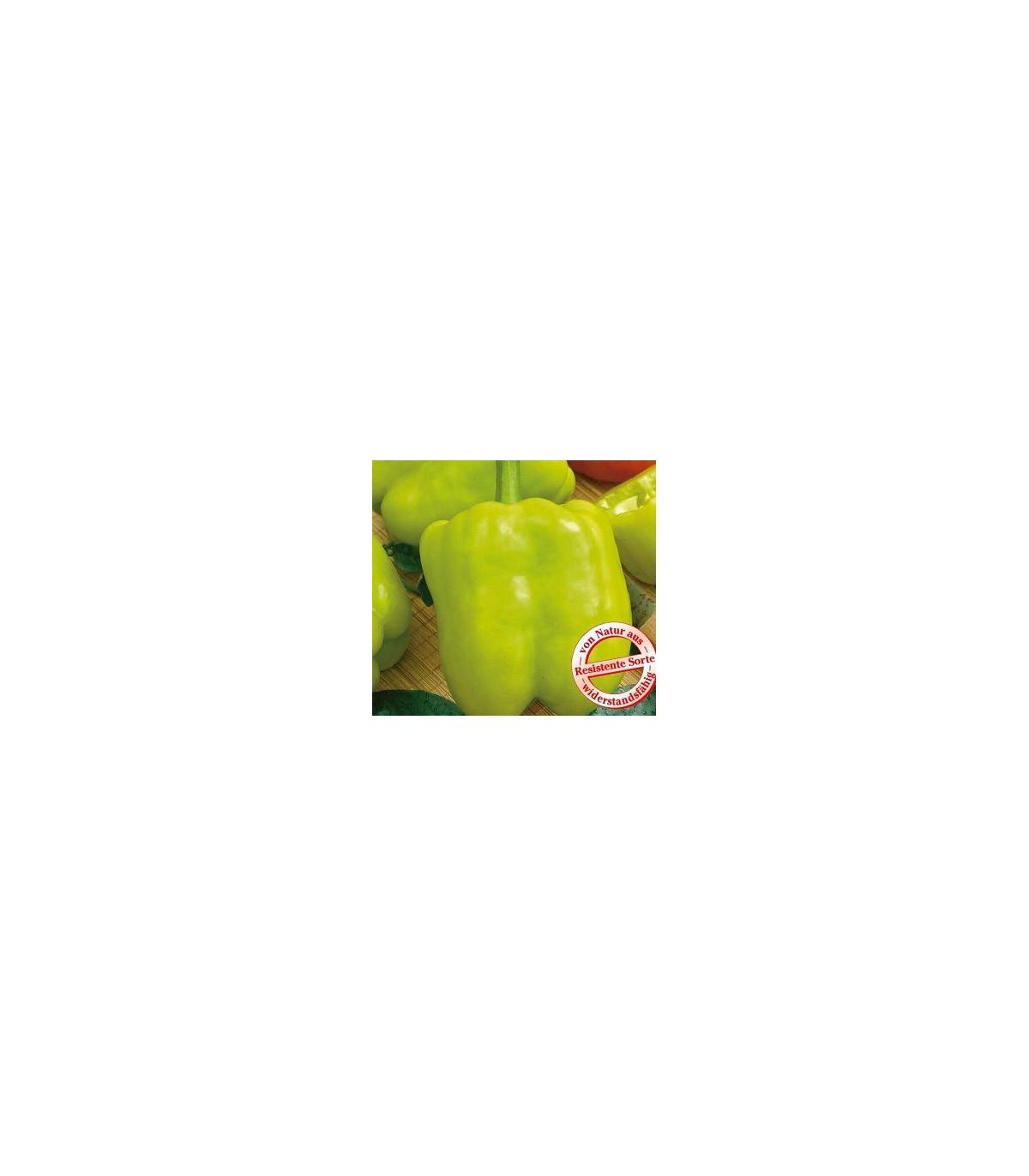 Paprika Monte - Capsicum annuum - semená papriky - semiačka - 5 ks