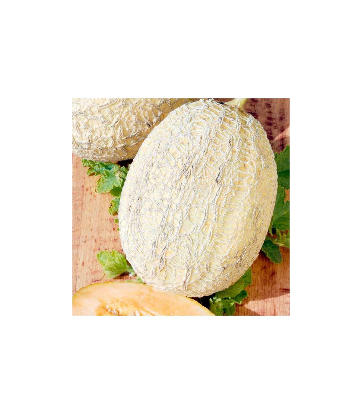 Melón F1 Emir - semená melóna - semiačka - 6 ks