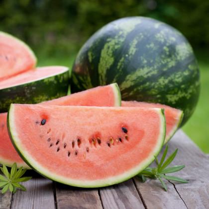 Dyňa červená Crimson Sweet - melón vodný - Citrullus lanatus Matsum et Nakai - semená dyne - 6 ks