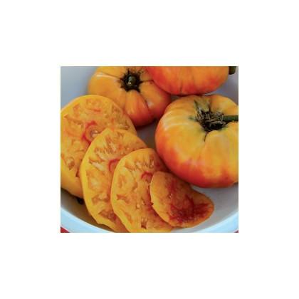 Paradajka- Zlatá medaila- semiačká paradajky- 6 ks