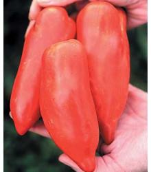 More about Paradajka - Howard - semená paradajky - semiačka - 7 ks