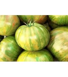 Paradajka - Veľká zebra - Lycopersicon esculentum - semená paradajok - 6 ks