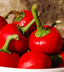 More about Chilli Bomba v raji - semená chilli - semiačka - 6 ks