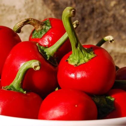 Chili- Bomba v raji- semená chili- 6ks