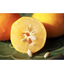 Balíček pre milovníkov citrusov