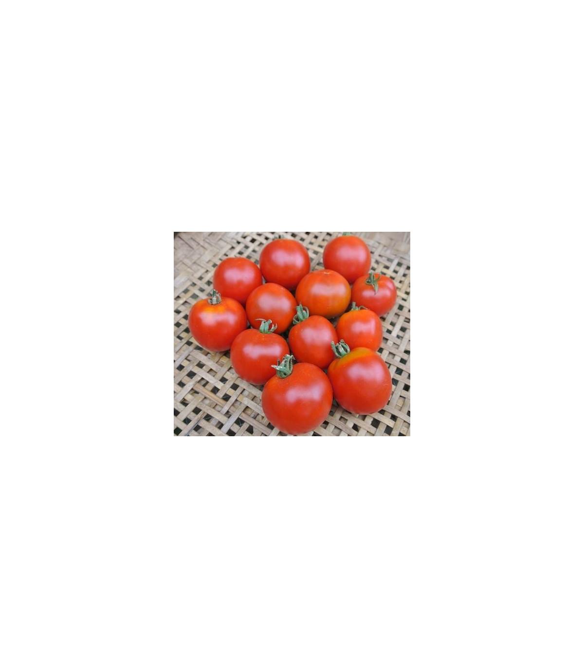 Rajčiak kolíkový Sláva Porýní - semená paradajok - 50 ks
