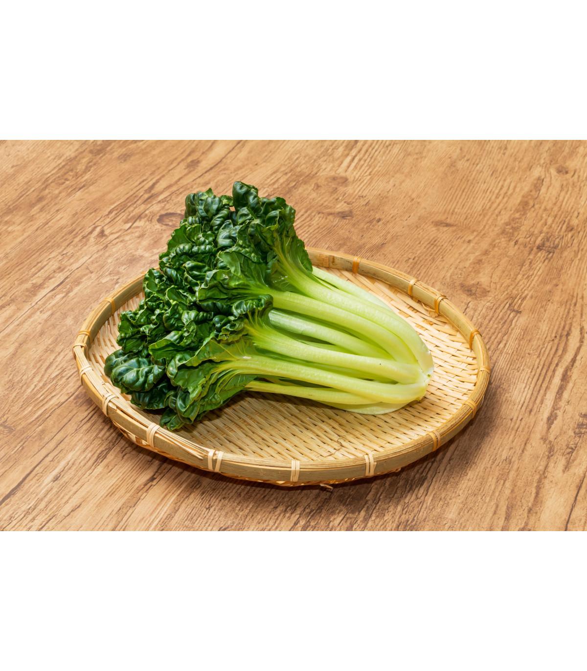 Pak Choi čínska kapusta Sagami - Brassica rapa var rosularis - semená - 150 ks