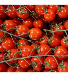 Paradajka Supersweet F1 - Lycopersicon esculentum - rajčiak - semená - 6 ks