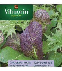 Vilmorin - Rýchly orientálny šalát - semená - 2 g