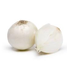 Cibuľa jarná biela - Allium cepa - semená - 250 ks