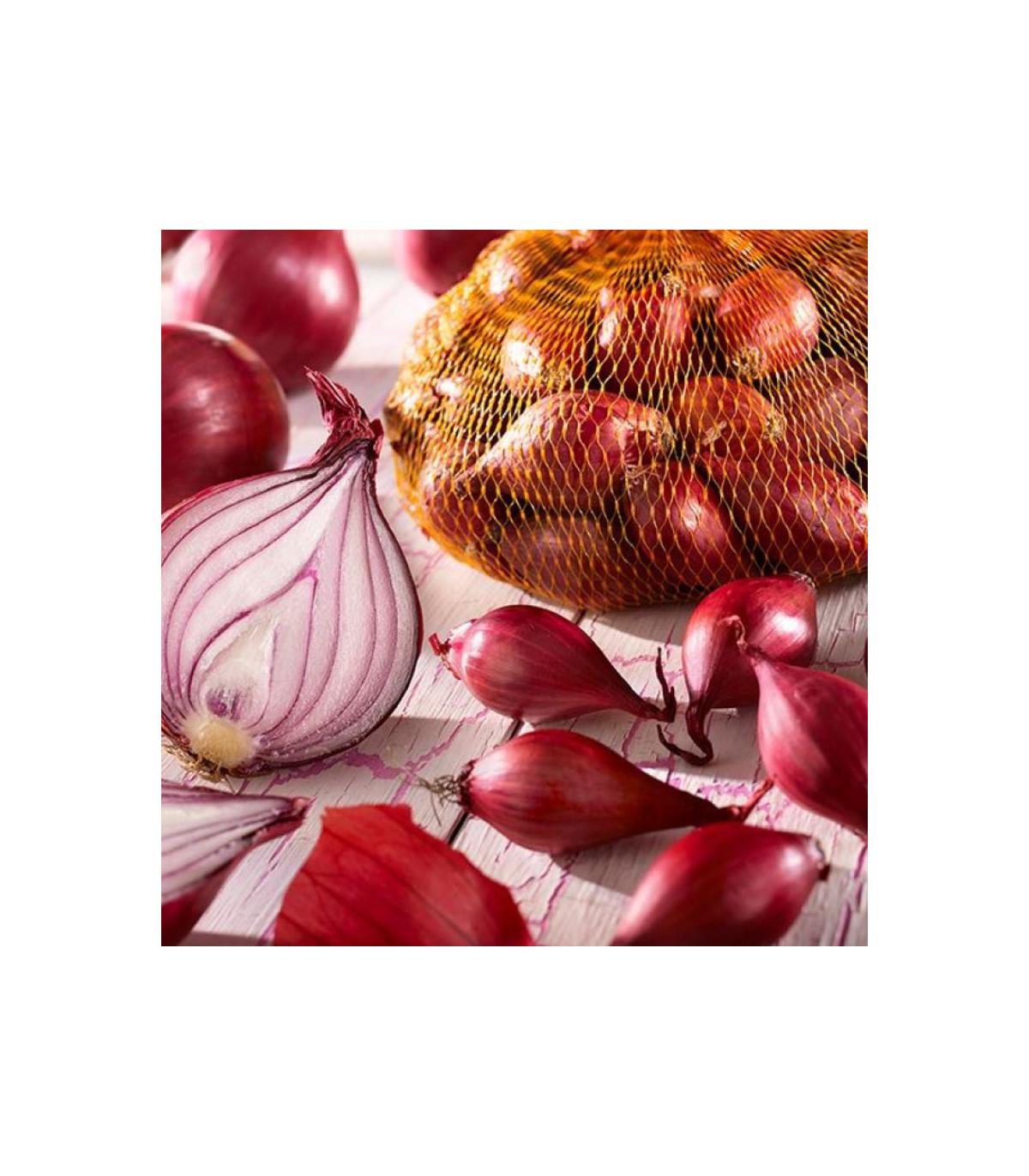 Cibuľka sadzačka Piroska - Allium cepa - cibuľky - 250 g