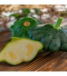 Patizón Green Saucer F1 - Cucurbita pepo - tekvica - semená - 5 ks