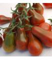 Paradajka Červená hruška - predaj semien paradajok-7 ks