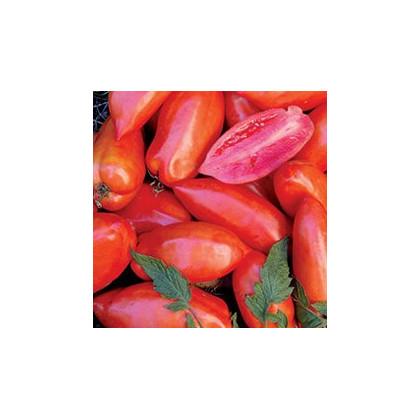 Rajčiak Opalka - predaj semien rajčin - 7 ks
