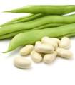 Fazuľa kríčková Dublette - semená fazule - semiačka - 8 ks