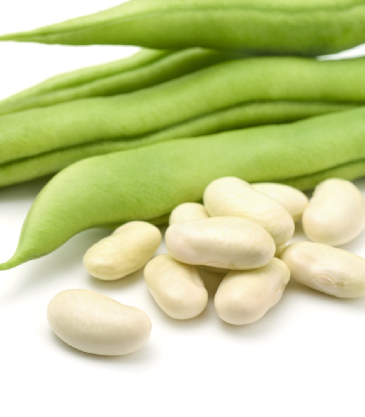 Fazuľa kríčková Dublette - Phaseolus vulgaris var. nanus - semená  - 20 ks