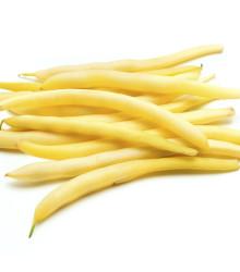 Fazuľa kríčková Hildora - Phaseolus vulgaris - semená fazule - 10 g