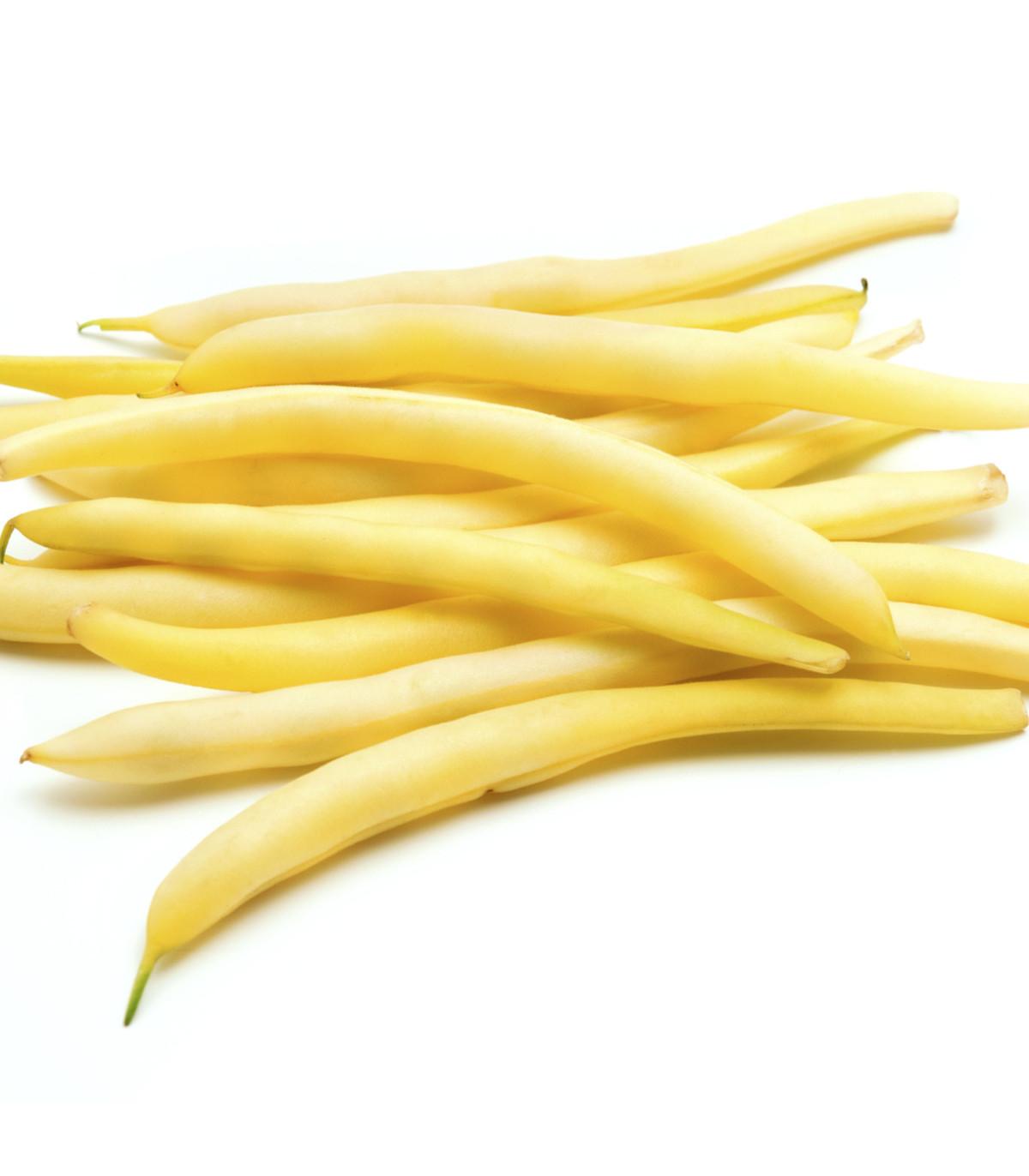 Fazuľa kerová Hildora - Phaseolus vulgaris L. - semená fazule - semiačka - 10 gr