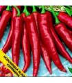 Paprika Hodonínska sladká - Capsicum annum - semená - 0,6 g