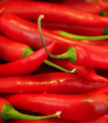 Chilli - Aji crystal - semiačka chilli - semená - 7 ks