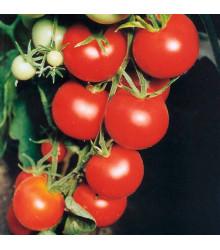 Paradajka Tamina - Solanum lycopersicum - rajčiak - semená - 20 ks