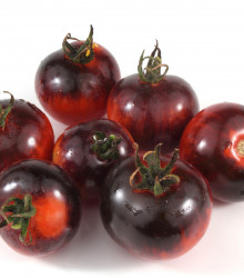 BIO paradajka Black Zebra - Solanum lycopersicum - rajčiak - bio semená - 7 ks