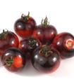 Bio rajčiak Black Zebra - Solanum lycopersicum - bio semená - 7 ks