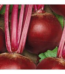 Repa šalátová Pablo F1 - červená guľatá - Beta vulgaris - semená - 50 ks