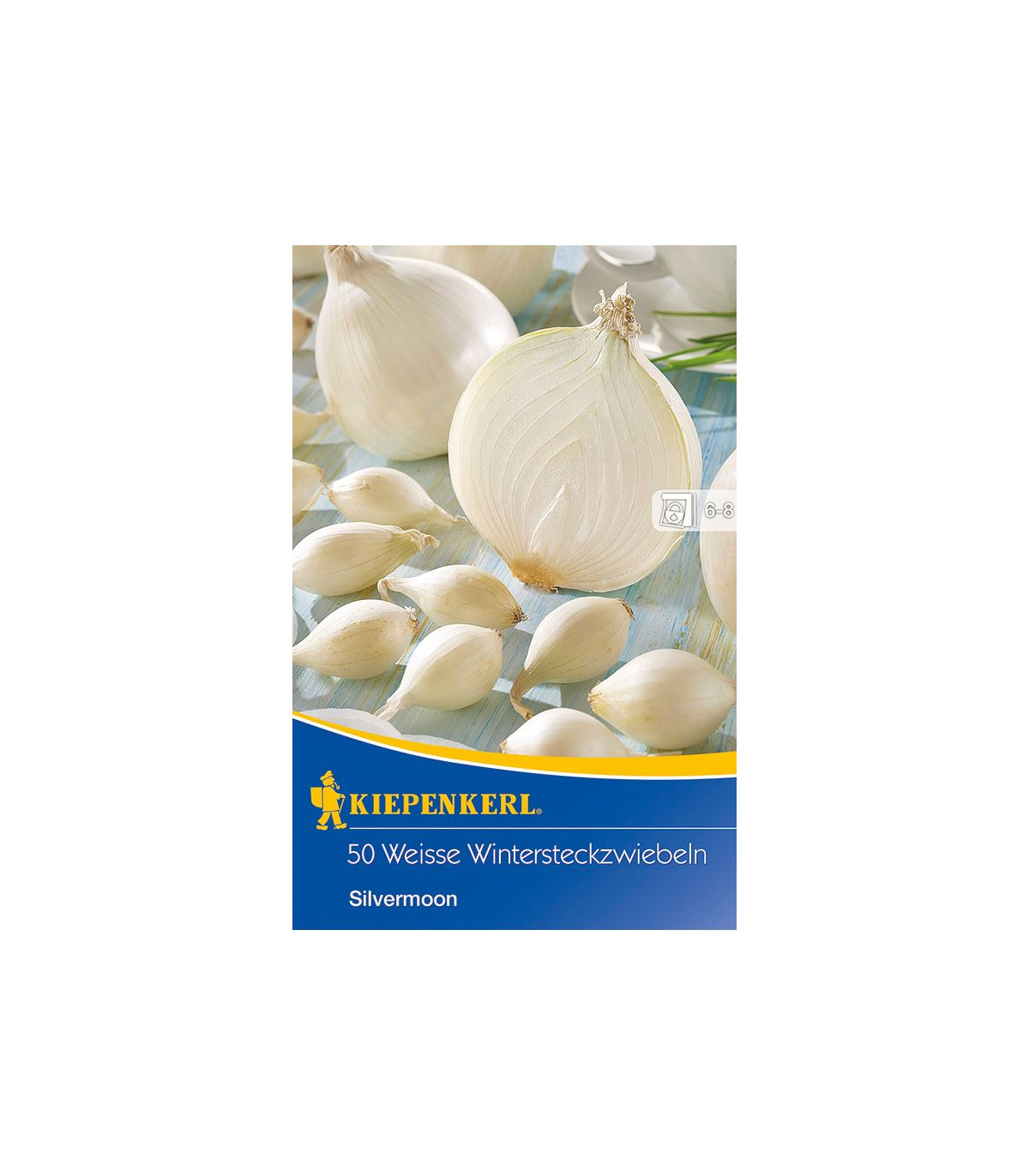 Cibuľa sadzačka Silvermoon - Allium cepa - cibuľky - 50 ks cibuliek v balení