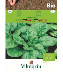 BIO Špenát Geant d'hiver - Spinacia oleracea - bio semená - 10 g