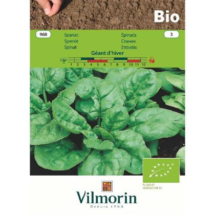 BIO špenát Geant d'hiver - Spinacia oleracea - bio semená špenátu - 10 g