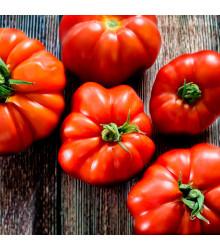 BIO Paradajka Marmande - Lycopersicon esculentum - rajčiak - bio semená rajčiaka - 15 ks