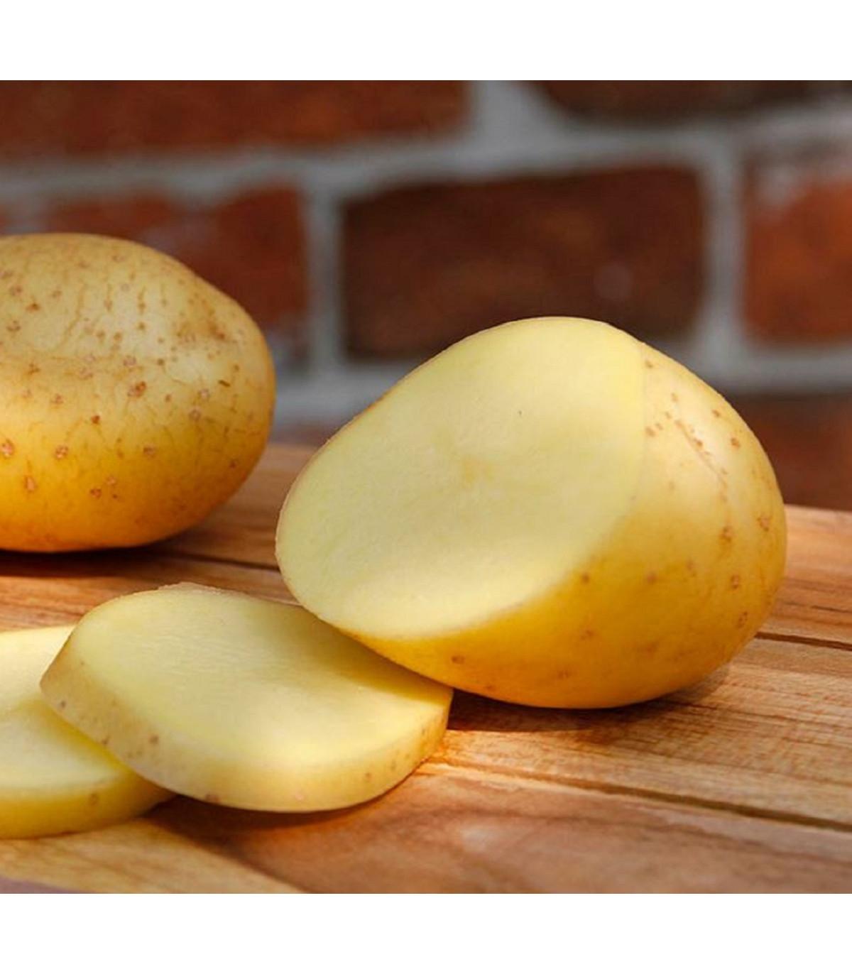 Sadbové zemiaky Belana - Solanum tuberosum - Kiepenkerl - 10 ks