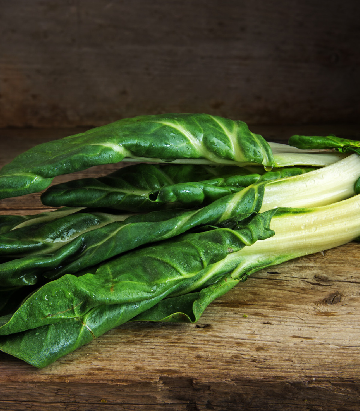Mangold Lucullus - Beta vulgaris - semená - 100 ks