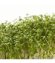 Žerucha zahradná dánska - Lepidium Sativum - semená - 850 ks