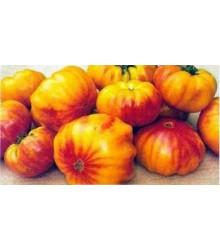 Paradajka dvojfarebné-semená rajčiakov-6 ks