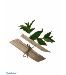 Menovky na označenie sadeníc - drevené - 10 ks